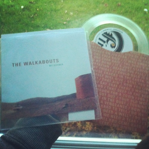 "The Walkabouts (Fin Records) Buy it Here: http://finrecords.com/store-t417/the-walkabouts.aspx The Walkabouts are fresh off a successful European tour that saw them playing to sold out crowds in several countries. Fin Records has hooked up with The Walkabouts to  release a series of 7""s from the bands Travels in the Dustland. The ""My Diviner"" 7"" is the first and is a pressing of 1,000 on clear vinyl with only the faintest tint of a greenish blue coloring. Song lyrics adorn the custom inner sleeve and the outer sleeve has a barren desert image that matches the music perfectly. ""My Diviner"" is an atmospheric ballad with swells of sound playing backdrop to strong lyrical content. The Walkabouts provide a hushed effortlessness to their dusty Americana. B side ""Neu Death Valley"" is a subtle wash of texture with an organic banjo plucking away alongside the flowing tones. The Walkabouts are a band that knows how to create a mood perfect for a desolate journey and they have provided a fine start to their series of 7""s for Fin Records."