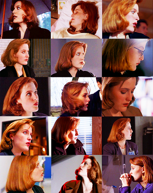 hazel-scully:  Dana Scully's profile: Season 2