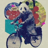 Panda on a bike! artist Steven Kline via The Aquarians