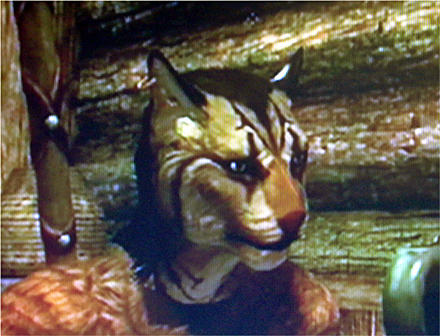 Switchd tv's.A better photo of Shalimar, yay. :3I'll stop with the Khajiit photo's, for now.