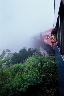 train fog foggy train ride