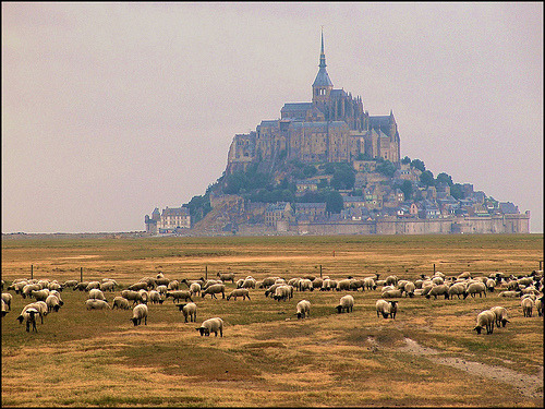 allthingseurope:  France: Le Mont-Saint-Michel (by mau_tweety)