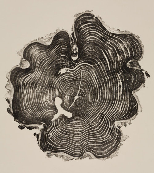 "tmagazine:  Relief print from a 31-year-old honey locust via ""Woodcut"" (Princeton Architectural Press, $30). As Stephen Heyman writes for The Moment, the book is a collection of Bryan Nash Gill's relief prints of tree-trunk cross sections, which the artist harvests from felled trees, cedar telephone poles and discarded fence posts in his native Connecticut.  We especially love the white ""T,"" which Gill says began as a bark pocket."