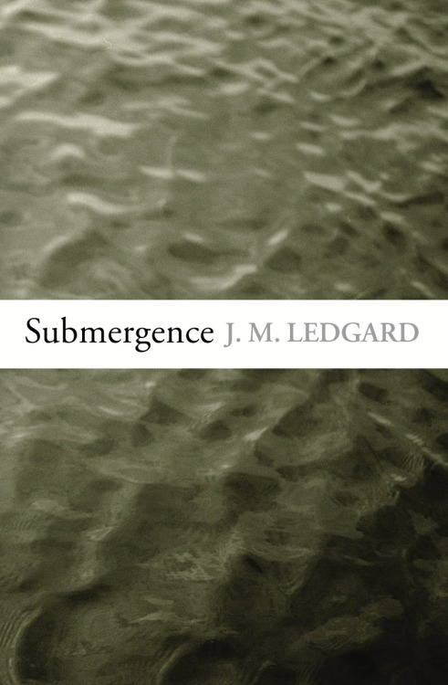 The British edition of Submergence