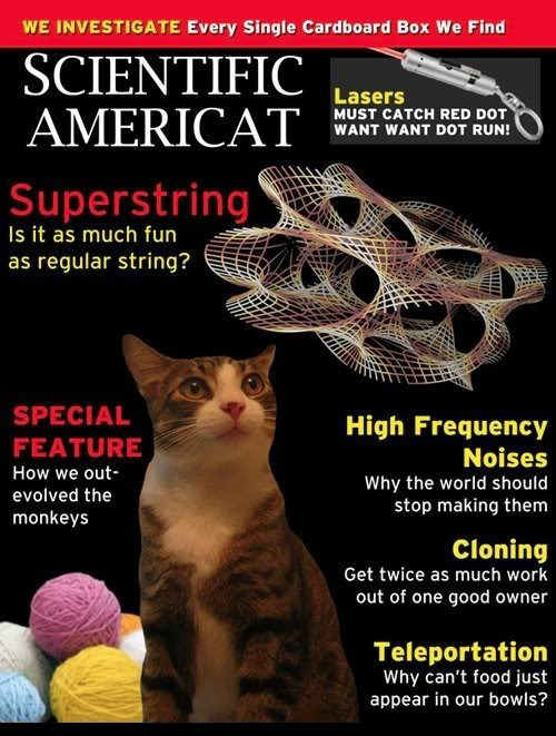 Scientific Americat.