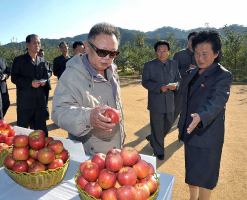 kimjongillookingatthings:  looking at an apple