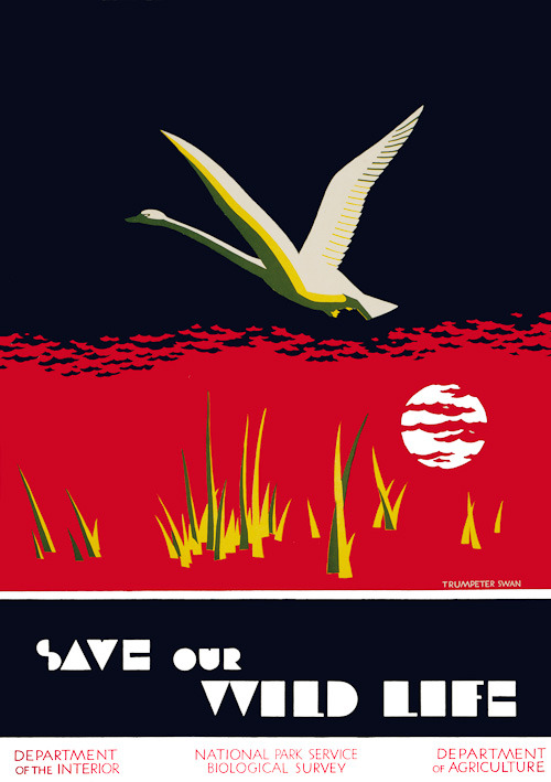 """Save Our Wild Life"" poster circa 1940 for the Department of the Interior / National Park Service illustrated by Dorothy Waugh via mudwerks and via WPA Posters - Vintagraph"