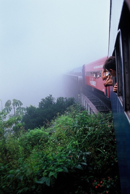 Mountain Range Train (Brazil) The tourist lines with the most beautiful landscape in Brazil. Traveling along 110 km of a railroad with 125 years of history through the largest preserved area of Brazil's Atlantic forest. The Mountain Range Train of Paraná departs from the city of Curitiba to Morretes everyday. The trip takes approximately 3 hours Location: John Bridge, 55 meters high - Serra do Mar - Paraná - Brazil