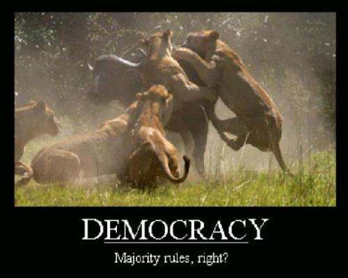 In democracy the majority rules, right? #let #tlot