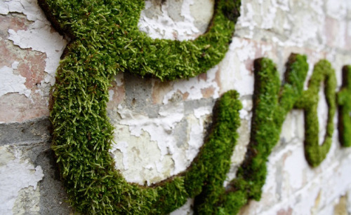 "curator-of-curiosities:  Oohh, but they do make moss in a box!  I used it to ""paint"" my garden wall. nybg:  Anna Garforth's Phenomenal Green Graffiti is Made Out of Moss When I think ""graffiti,"" I think clandestine night excursions to highway overpasses and rooftop water tanks, tagging architecture with borderline-unintelligible street handles. Of course, there's the other side of the coin—5 Pointz in Queens, for example, which is about as close to literal as the phrase ""art house"" comes (still can't believe they're demolishing it in 2013). And then there's Anna Garforth's work. Her environmentally friendly moss wall art has drawn praise as it pops up across the globe. Now all she needs to do is figure out how to streamline the process by inventing living moss in a spray can. —MN"