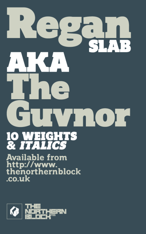 Regan Slab - Typeface A precision cut slab serif typeface. Simple curves are combined with sharp angles to provide a readable font with subtle characteristics. Regan Slab is ideally suited to wide range of applications including magazines, newspapers and handheld devices. Details include 10 weights with italics, 540 characters, 5 variations of numerals, small caps, stylistic alternatives, manually edited kerning and Opentype features.