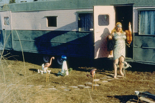 John Waters, Pink Flamingos (film still, top); Jeffrey Stockbridge, Untitled, 2008 (bottom) Via fette. More film stills.