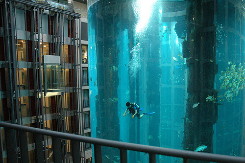 AquaDom at the Radisson Blu Hotel. 25 metres tall, containing 1,000,000 litres of seawater and over 1,500 fish of 50 species.
