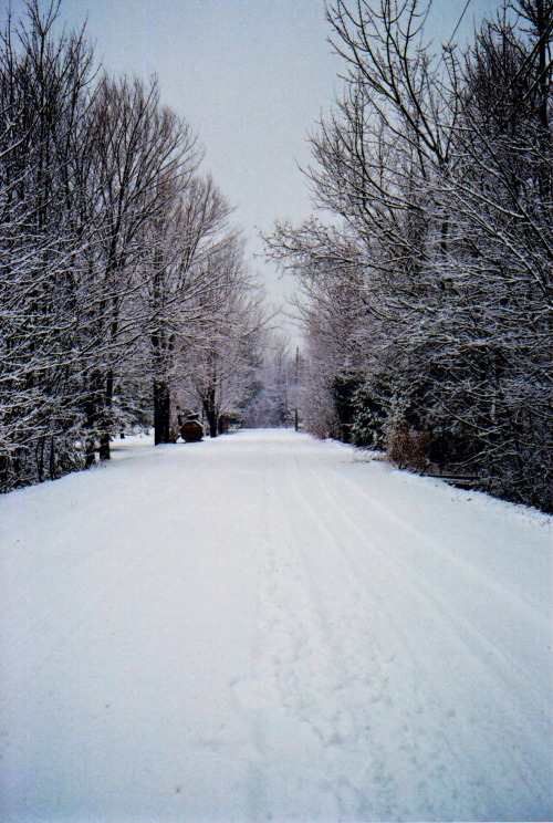 istillshootfilm:  Film Photography Submission By: astratos   Rural roads in Shediac, New Brunskwick Flickr
