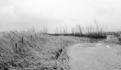 Pres Qu'ile Beach, Ontario by Melanie Courage