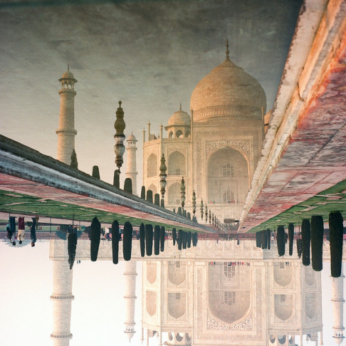 Taj Mahal Reflection by Abe Bingham on Flickr.
