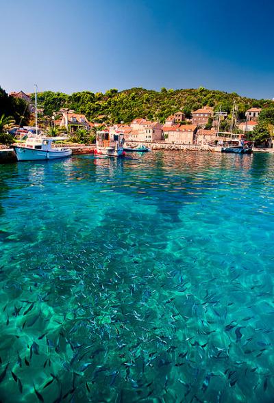 travelingcolors:  Elafits Islands: Dalmatia Paradise|Croatia(by John & Tina Reid on Flickr | viaillusionwanderer)