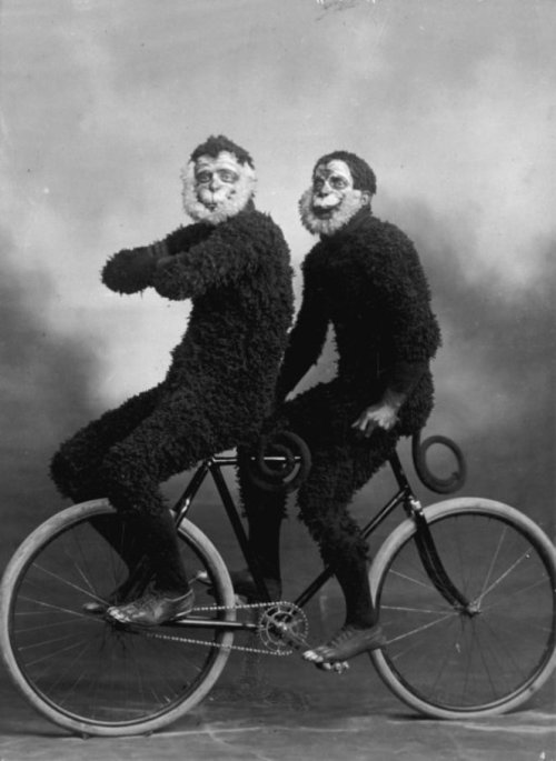 curiositycounts:  Two members of the New Zealand Invercargill Cycling Club, riding a bicycle backwards in monkey costumes circa 1910. Naturally. (via)