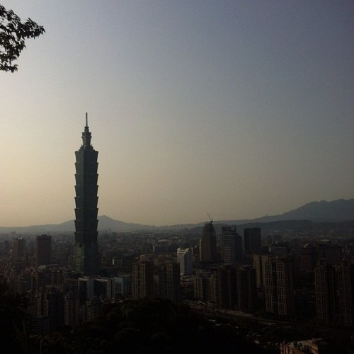 Alright, maybe the view isn't that bad after all. #taipei #taiwan #台北 #台灣 #nature #iphonegraphy #iphoneonly #photooftheday #bestoftheday #sunshine #sky #asia #亞洲 #skyline #mountain #hill #city #architecture #buildings #taipei101 #101      (Taken with instagram)