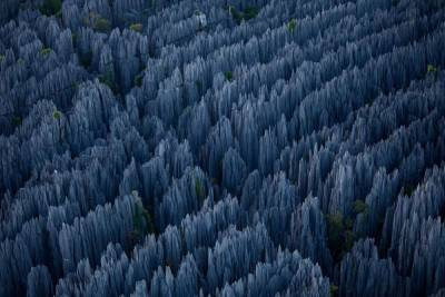 """Tsingy"" Stone Forest, Bemahara National Park, Madagascar (Spotted on All That Is Interesting)"