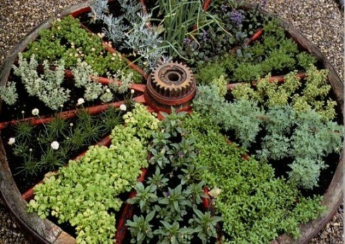 Gardening in … an old wagon wheel? Yes! In some wheels, an herb garden could be neat — with the spokes separating plant groups. (Spotted on Pinterest, with this Facebook photo as source.) See also: Benches and tables made from wagon wheels.