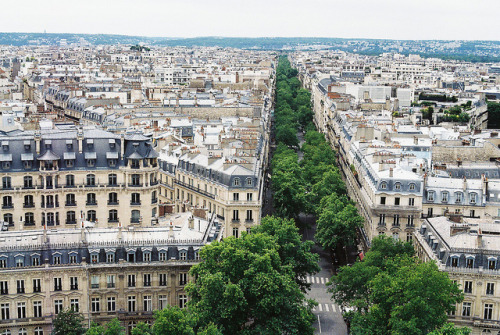 13neighbors:  Paris by louise lynn on Flickr.