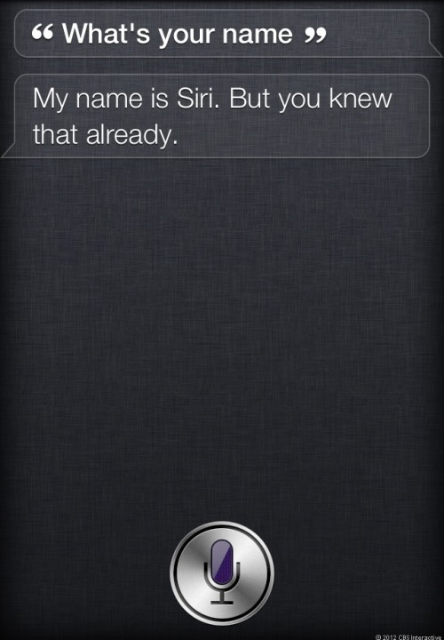 Apple's Siri might have been called something else. According to one of Siri's creators, late Apple co-founder Steve Jobs was not initially enamored with the name.  Article