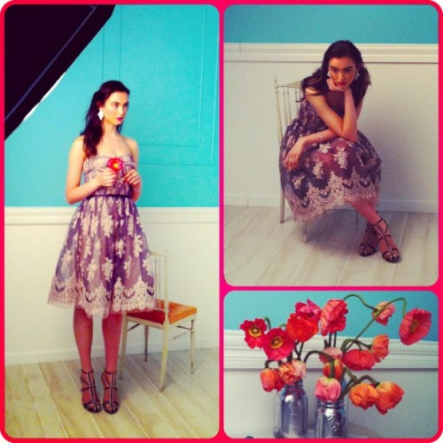 BTS Bridal shoot… The perfect wedding guest #poppies #flowers #wedding #behindthescenes #work #bridal #fashion #guest #lace #girly #instagood  (Taken with Instagram at Gilt Groupe Studios)