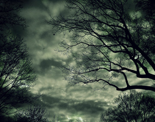 thedrunkenorseman:  Storm Coming 1 by ~forbiddenwaffles123