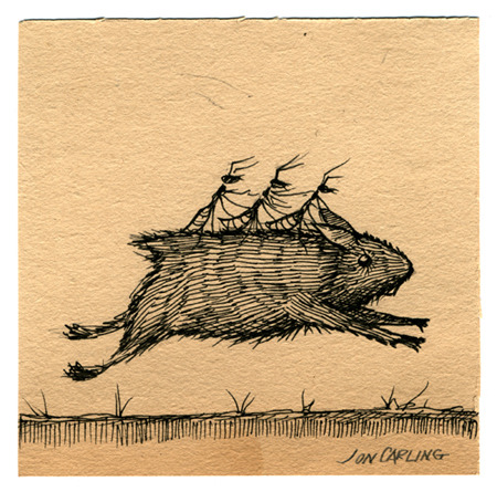 joncarling:  'ants riding a guinea pig'