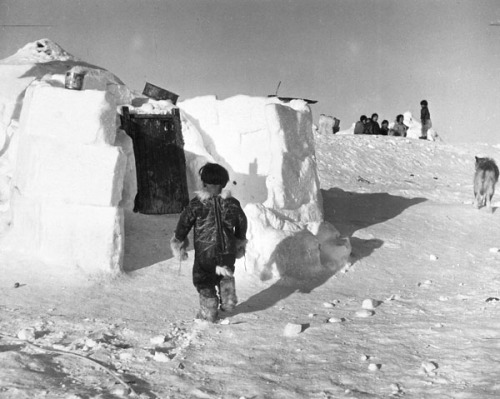 [Boy standing at entrance to igloo at Hall Island, Gulf of Boothia, N.W.T., [Nunavut] during the spring inspection flight, 1949. Gulf of Boothia, N.W.T., [Nunavut]  Credit: Henry Larsen / Library and Archives Canada / PA-121412Photographer: Bailey, S. J.