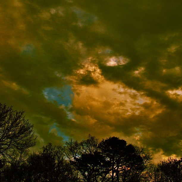 This is letting go #sunset #77 #clouds #ominous #negative #stormy #capemay #sky #rebel #canon #t2i #dslr #exposure #sunlight #trees #woods #light #clear (Taken with instagram)