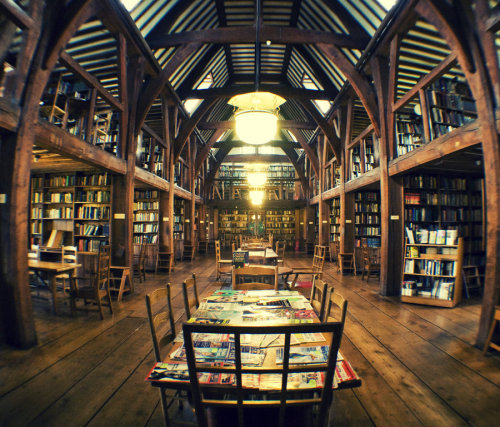 The Library by ~george-wilson