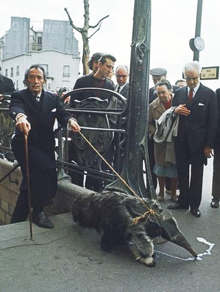 Salvador Dali walking his Anteater