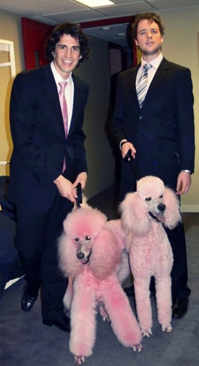 i just thought these douchebags with crazy poodles were so funny :-PdPd