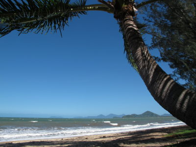 Palm Cove - Queensland  Nice ! Tempting, hey !? Go for a swim ?….  Sympa ! Tentant non !? On se pique une tête ?…