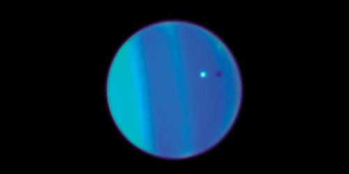 astronomicalconsiderations:  Been a while since we looked at Uranus. Here's a photo of it with a small moon!