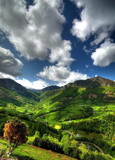 bluepueblo:  The Pyrenees, Aquitaine, France photo via artsandletters  This is absolutely beautiful.