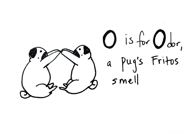 bahhumpug:  O is for Odor, a pug's Fritos smell. Ever notice when your pug is sleepy or sleeping how he/she smells strongly of Fritos? No? I'm the only weirdo sniffing her pug? Uh okay…  They DO smell like sweet fritos…especially the toes!