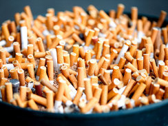 "Were cigarettes the greatest crime of the twentieth century? ""Moral outrage over the tobacco industry's century-long (and counting) merchandising of death colors every word of this book, from the title page to the final entry in the index. When you finish reading this superbly contextualized and harrowing work, I predict you will not only share Proctor's ire, you will even agree with his titular word choice. (Well, almost; and I hope not.)"" - Howard Markel, ""The Very Deadliest Habit"" Photo courtesy of CBS"