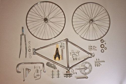 thingsorganizedneatly:  SUBMISSION: The Assembly of a 1980 Schwinn World Sport. By: Brendy Muninger