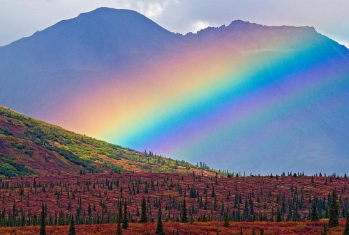 d4rk-w0lf:  Old Denali Road Rainbow by JLMphoto on Flickr.