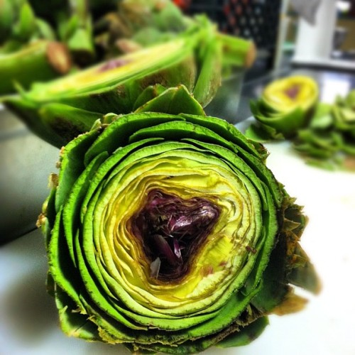 "homecooksuperstar:  Inside an artichoke. @umsegredony prepping for tomorrow's ""Veggie Tales"" (Taken with instagram)  Gorgeous! Really looking forward to it."