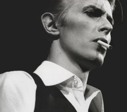 The Thin White Duke…bad ass…