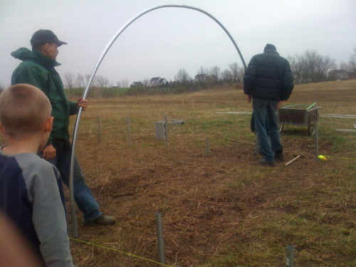 Steve and Ryan put up a hoop of the new hoophouse.