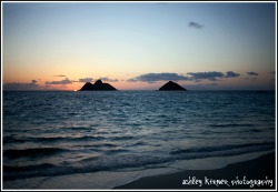 so my girlfriend and i went out to lanikai today to watch the sunrise.  We were sitting and i got up to get closer to the water and realized the sun was just starting to peak out.  It was honestly one of the best sunrises ive ever watched here in hawaii.