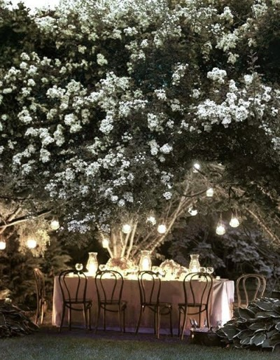 I'd love to set up a picturesque dinner like this someday.