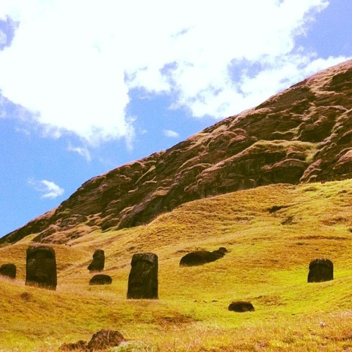#rapanui #easterisland  #ranoraruku #buriedheads #moai (Taken with instagram)