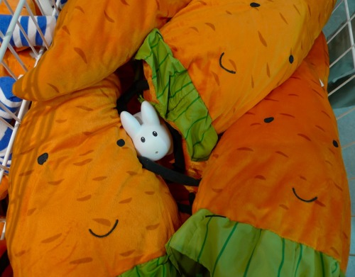 yearofthelabbit:  Cozy in a crate of carrots.