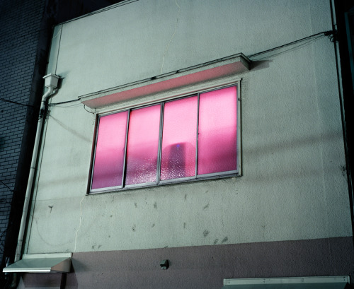 pink window in the red light district, tokyo, 2009